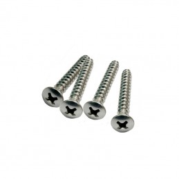 Awesome Neck Plate Stainless Steel Screws No 10, 45mm